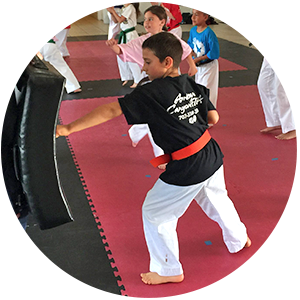 ATA Martial Arts American Canyon ATA Martial Arts Karate for Kids